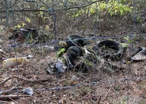 Överallt på den gamla tippen ser man lämningar efter år av dumpningar.