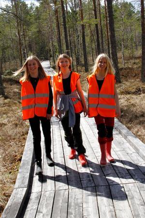 När Thea Nilsson, Linnea Karlsson och Alva Karlsson, var i parken på genrep inför guidningen var det kallt och regnigt – men på nationalparkens dag strålade solen hela dagen.