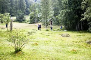 Tures äng i Tuna Hästberg är en av naturreservaten. Foto: Arkiv