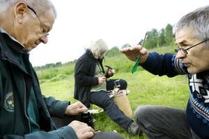 Knackande kollegor. Kursledaren Evert Larsson instruerar Thomas Hjalmarsson. Thomas och Britt Eklöf i bakgrunden är kollegor på Kvarntorps naturskola i Kuma.