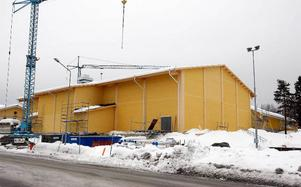 Projektet Fria Föllinge ska lägga 5,6 miljoner på att kulturanpassa den nya allaktivitetshallen, som ska drivas i samarbete med Föllingealliansen.