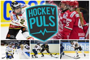Modo-Luleå, AIK-HV och AIK-Göteborg visas på Hockeypuls denna helg.