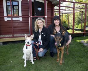Går till val. Jenny Falk till vänster är ordförande för Västeråsavdelningen av Djurens parti och Bibi Noris ledamot. Hundarna Doris och Midas var gatuhundar i Spanien, men räddades av Jenny. Foto: Per G Norén