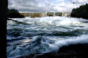 Att återföra vattenkraftsmedel är ett viktigt steg i att låta Jämtland och inlandet ska fortsätta att leva och frodas, skriver dagens debattör.Foto: Henrik Flygare