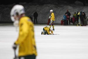Efter tre säsonger i svensk bandys finrum för Ljusdals BK lämna elitserien. Detta efter 2–2 i den sista kvalmatchen mot Gripen.