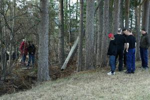 Efter att ha rivit älgen drog björnen kroppen till ett dike alldeles vid kanten av barnens lekområde
