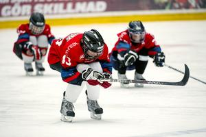 Hockey har blivit en rikemanssport skriver signaturen Leinad.