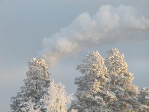 En kylig vinterdag.