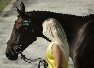 Frida Andersén och hennes Herta. De fick aldrig chansen i finalhoppningen i den olympiska fälttävlan.