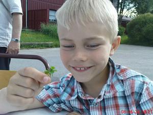 8-åriga Adam Swahn från Bomhus hittade en sjuklöver.
