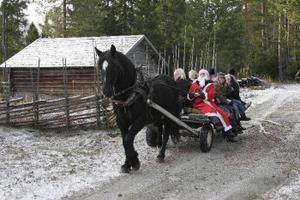 Hjul på vagnen istället för medar. Så fixades hästskjutsen trots att snö saknades på julmarknaden i Gnarp.