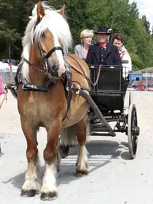 Harri och Calle har kört bland andra landshövding Maria Norrfalk.