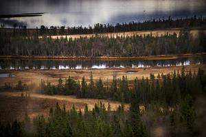 I Ånnsjön finns det mycket våtmarker och myrar.