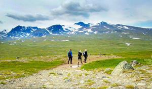 Den klassiska vandringsleden Jämtlandstriangeln - som går mellan fjällstationerna Storulvån, Sylarna och Blåhammaren - finns inom området.