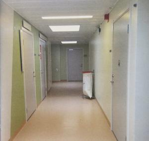 Konstnären Marie Bondesons bild från psykosavdelningen i Gävle.