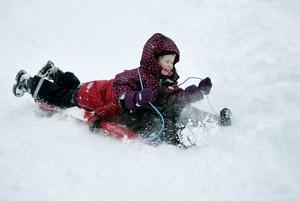 PULKAÅKNING. Snön yrde åt alla håll när Nora Stockhaus, 4 år,  och Daniel Åström, 3 år,  tog sig ner för pulkabacken i full fart.