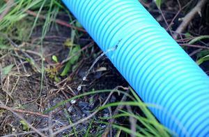 Genom små hål i slangen sipprar duschvattnet ut och renas genom infiltration i marken.