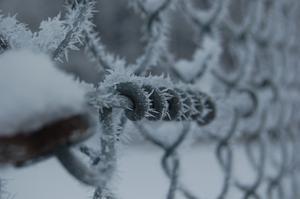 En kall vacker vintermorgon!