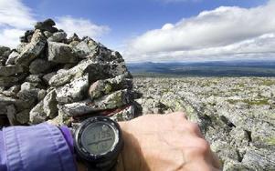 Dalarnas läns näst högsta punkt, Sömlingshågnas topp på  1 195 meter över havet. Nipfjället syns långt i bakgrunden. Foto: Mikael Forslund