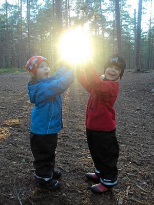 Januari månads bästa bild. Vi var med våra barn och lekte vid en av grillplatserna i Karlslundsskogen då detta härliga fototillfälle dök upp. Resultatet blev över förväntan.