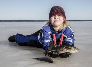 Valdemar Larsson, 10 år, fick till en början hjälpa mamma och pappa att bära fångsten. Sedan fick han familjens största abborre.