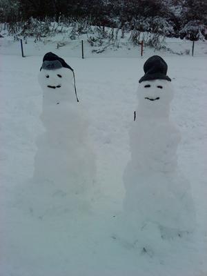 Barnen på ängensförskola på gryta har gjort dom här fina snögubbarna och dom sa att det är en snö mamma och pappa.