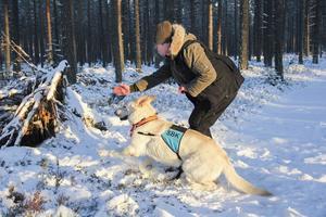 Britta Anderssons tränar sök med sin vita herdehund Tage.