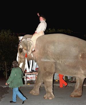 Ewert Ljusberg kom ridandes på en elefant Storsjöyran 1996.