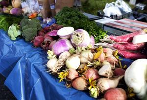 Andelen ekologiska livsmedel hos landstinget femdubblades i våras, från 5 till 25 procent.
