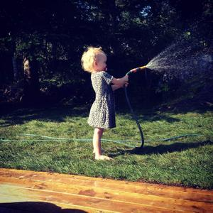 Nikki vattnar den nylagda gräsmattan. Foto: Kim Rangemo