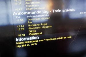 Flera personer fick vänta från åttatiden på morgonen till sen eftermiddag när deras försenade tåg gjorde att bytet i Östersund gick fel.