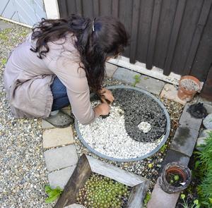 Yin och yang-märket har Helen gjort själv. Det gäller att städa emellanåt så att stenarna ligger på rätt ställe.