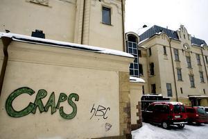 Kommunen överväger att sätta in extra bevakning och kameror för att stoppa vandaliseringen.