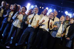 Västeråskören Rock everybody stod för nästan hälften av alla körsångare i tävlingen.