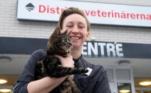 Lina Edlund, djurvårdare hos Distriktsveterinärerna i Sollefteå