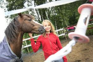 Nathalie Lättman välkomnar de nya reglerna, även om de inte innebär någon förändring för henne. C-ponnyn Ferrari är redan ute mycket och har sällskap av andra hästar.