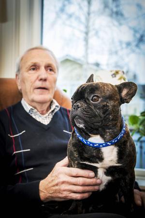 Den franska bulldoggen Malte och Lennart Strandberg trivs tillsammans.