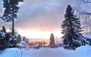 På en promenad i det vackra vintervädret tog jag denna bild på solnedgången.