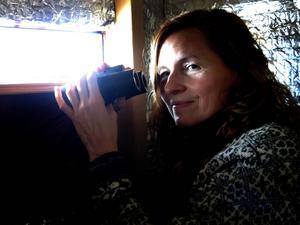 Första parkett. Att sitta här i gömslet i Gysinge och fotografera örnar har blivit en turistattraktion.