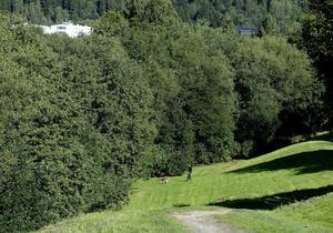 I ett grönområde vid Sidsjöbäcken hittades Stina Zetterberg död den 8 september.