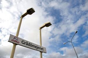Utöver Lactalis och Falköpings mejeriförening, finns  två privata konsortier som visat intresse för Grådö.