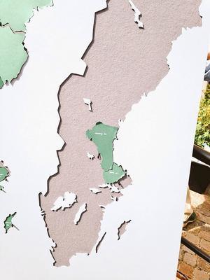 Flannellografen bjöd in till regionlösning. Så enkelt kan det vara!