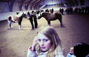 Islandshästarnas färgparad var en av aktiviteterna på öppet hus-dagen.
