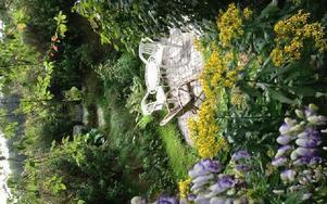 Göran Greiders sjunkna trädgård krävde mycket jobb, men det var inte förgäves. Foto: Göran Greider