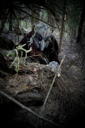 Det man tror är en sten kan mycket väl vara ett troll i skogarna kring Knupbodarna när det är säagensafari.
