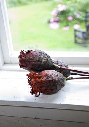 Fertil form i ett fönster.