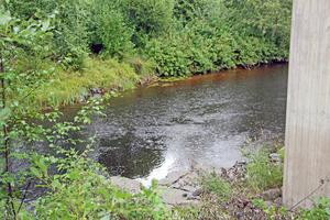 Galvån. Foto: Arkiv