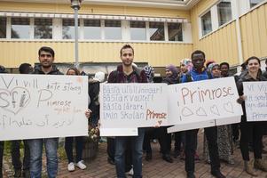 Alan Mesir, Mohannad Habab, Joel Drajiro och Zoziqne dos Santos tycker att Primrose är för bra för att stängas ner.