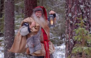 Tomten i en skog i Dalarna.