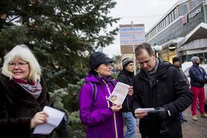Eva Mineur, Karin Solum och Magnus Svensson värnar alla miljön.